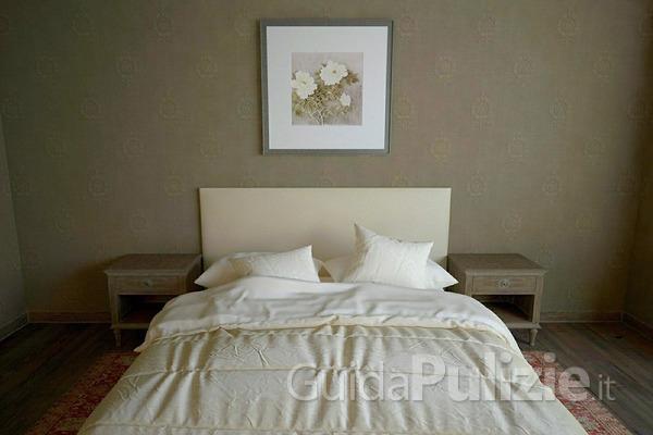 Prevenire ed eliminare le cimici da letto - Cimici da letto cause ...