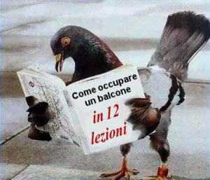 Come pulire gli escrementi dei piccioni? - GuidaPulizie.it