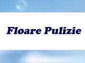 Floare Pulizie