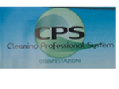 Cleaning Professional Sistem