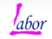 LABOR PACKING SERVICE