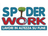 Spider Work Di Ranieri Gianni
